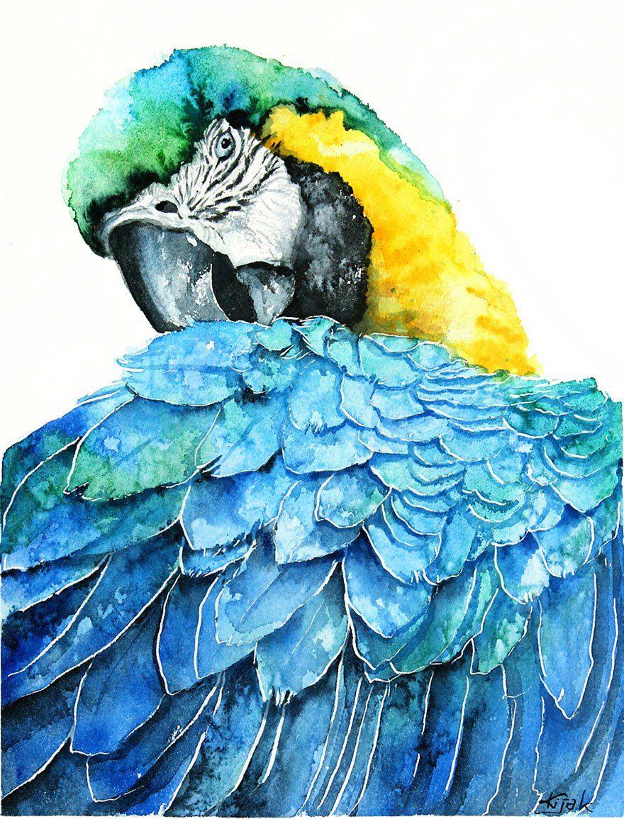 watercoloring-bird-01.jpg (880×1155)