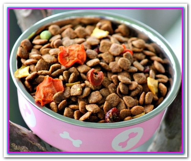 Best Dog Food For Yorkies At Walmart Dog food recipes