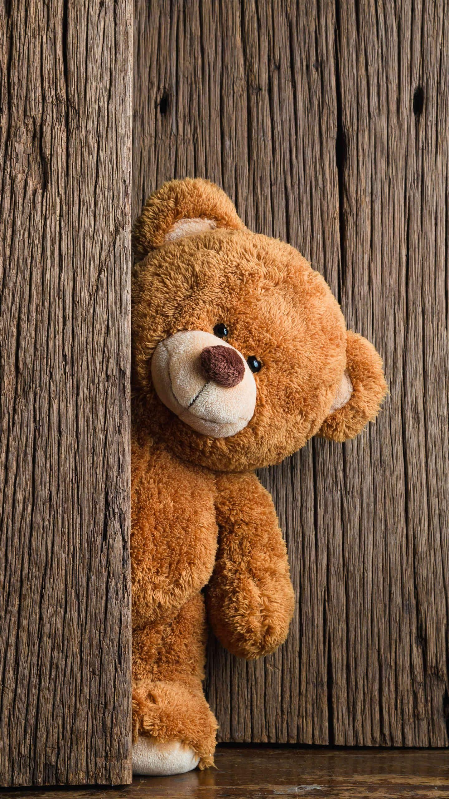 Pin Oleh Jenny Lai Di Cats Dogs Bird Panda Funny Cute Beautiful Object Seni Boneka Hewan Beruang Teddy