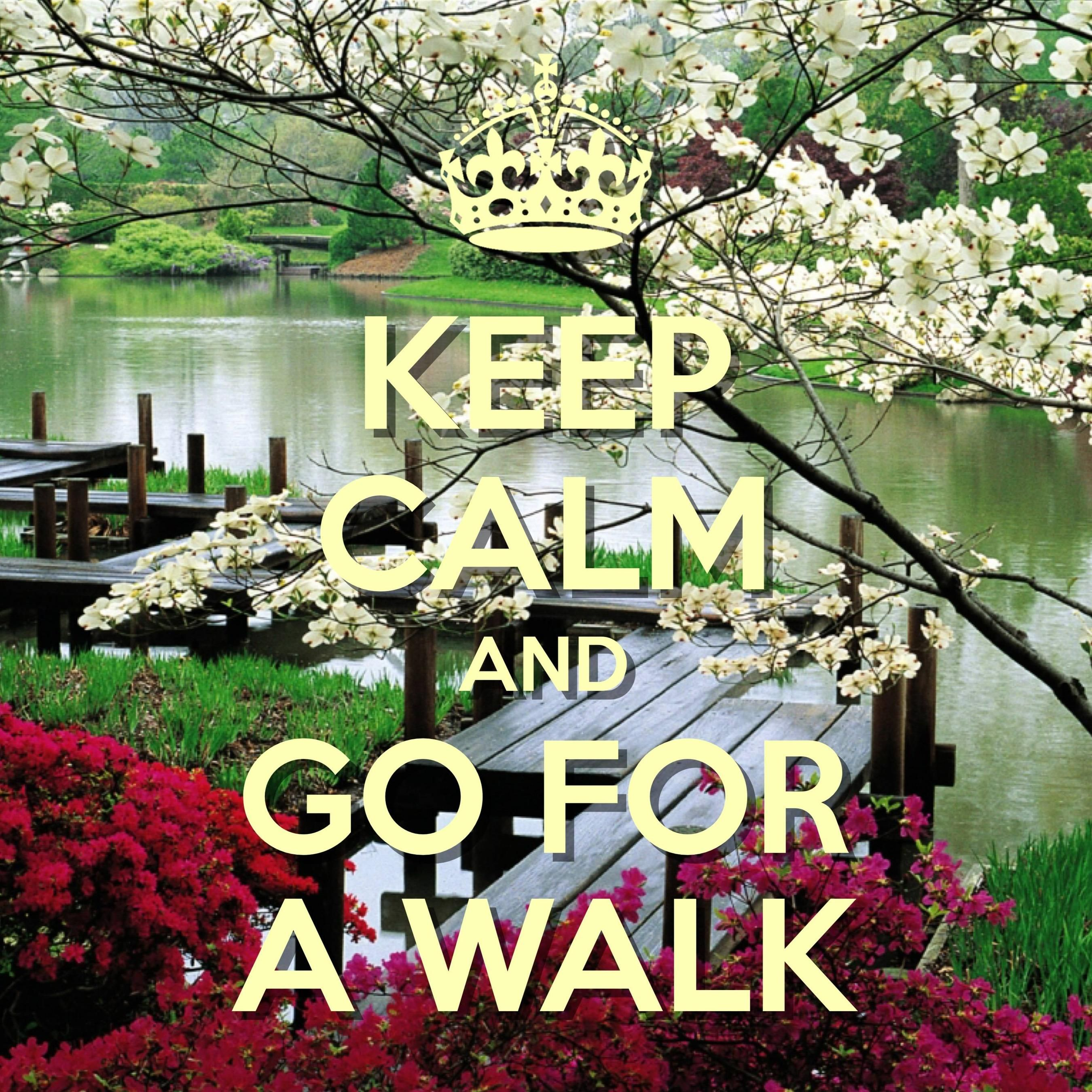 keep calm and go for a walk / created with Keep Calm and Carry On for iOS #keepcalm #skydive #walkinthepark