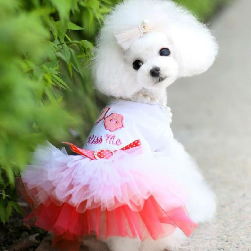 Lovely Hot Selling Pet Puppy Small Dog Cat Lace Princess Dress Dog Wedding Dress Small Dog Dresses Pet Clothes
