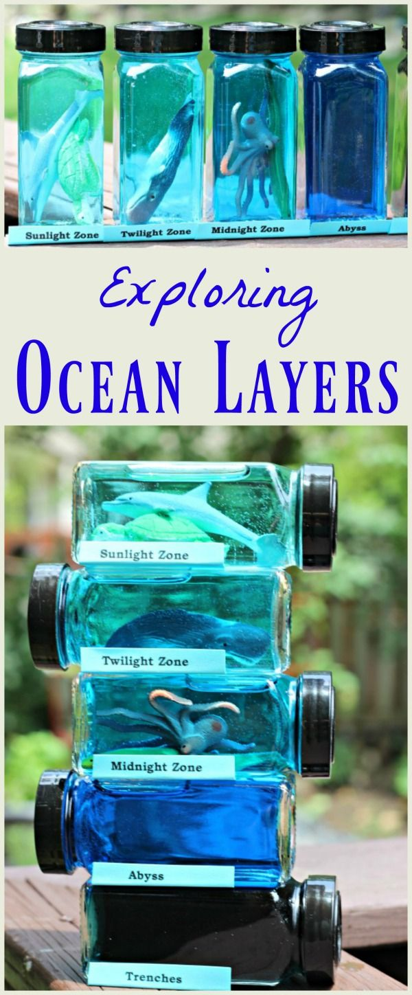 layers of the ocean project under the sea science ocean crafts