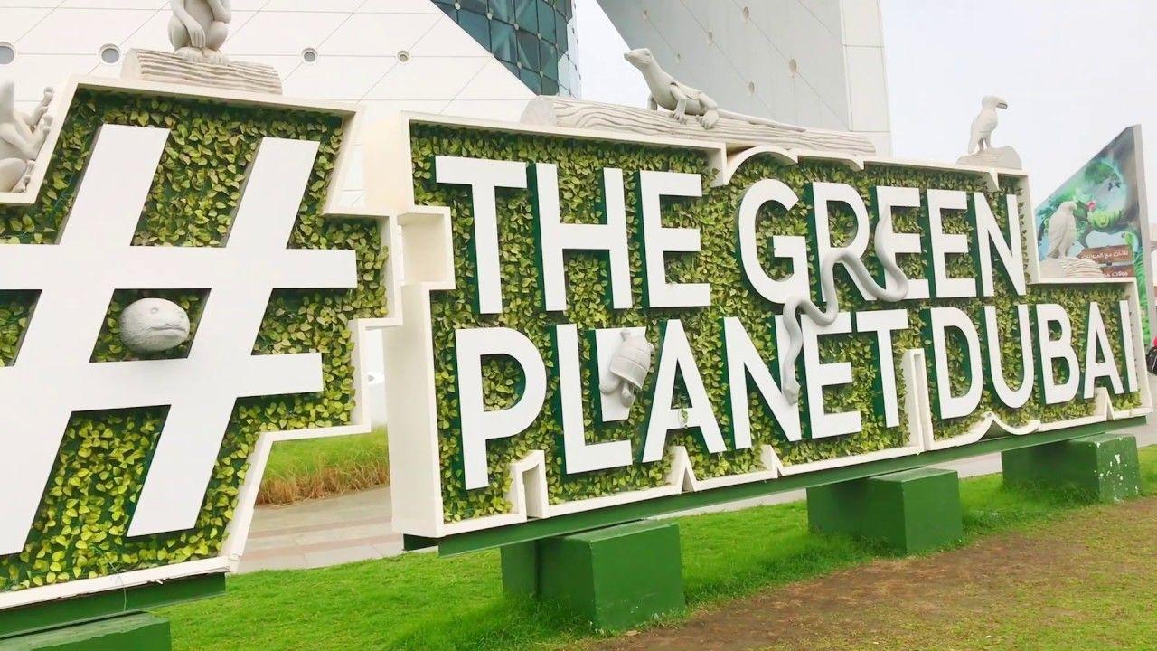 Green Planet Dubai Indoor Rainforest In Dubai Dubai Tourist Attractions Dubai Tourist Attractions Tourist Attraction Tourist