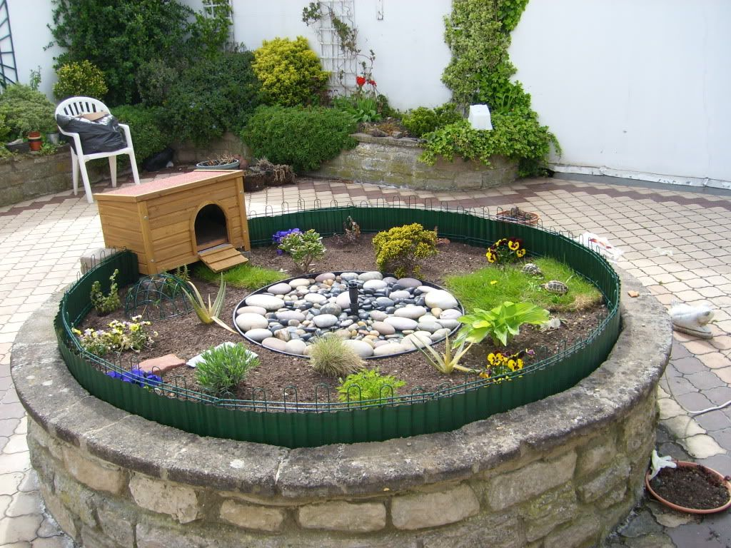 Best 25 outdoor tortoise enclosure ideas on pinterest for Exterior enclosure