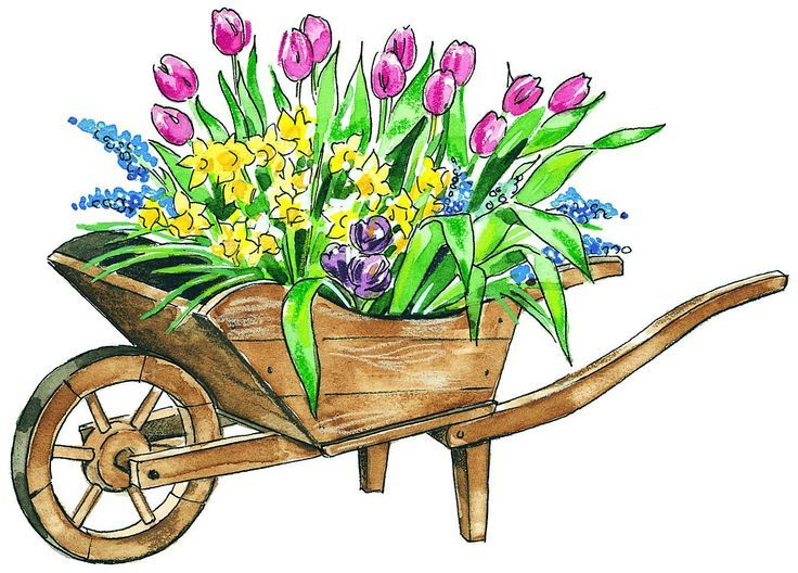 image result for may clipart draw and watercolor painting rh pinterest co uk clip art for may 27th clip art for may day