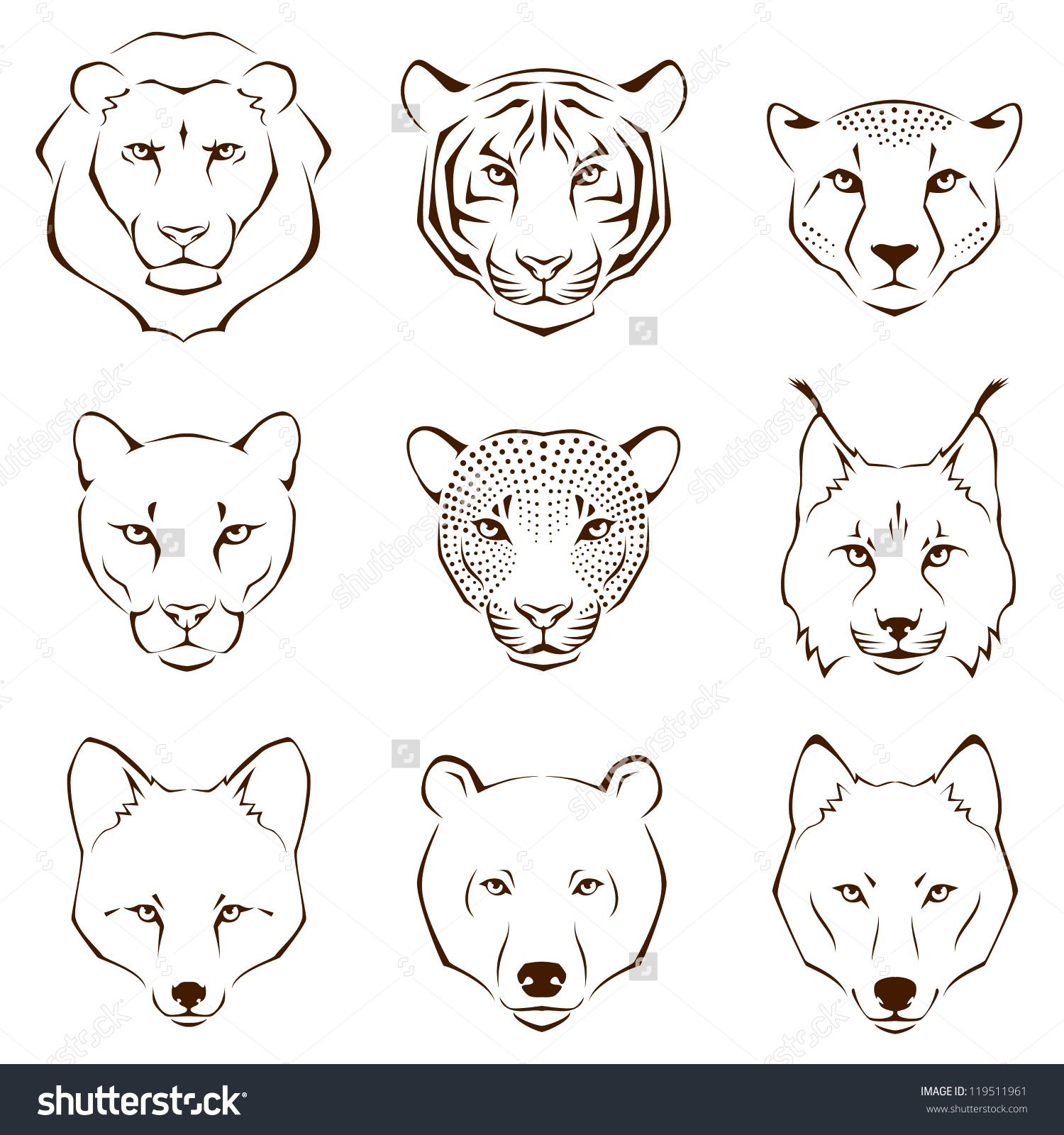 Animal Face Line Drawing