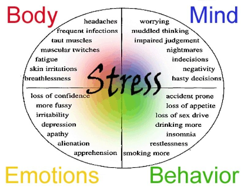 Stress management worksheets \u0026 infographic Some of the different factors and causes of stress Infographic Description Stre