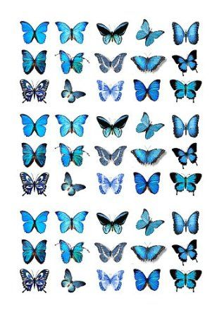 Photo of 45x Blue Butterflies Edible Cake Toppers (Birthday Cupcake Topper by eShack)