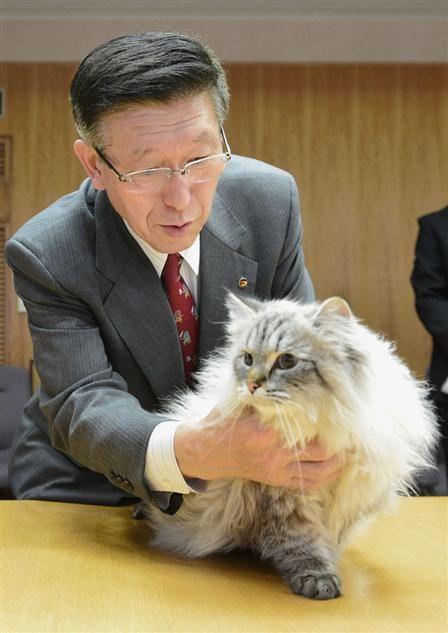 ロ大統領贈呈の猫、到着 平和願い「ミール」と命名