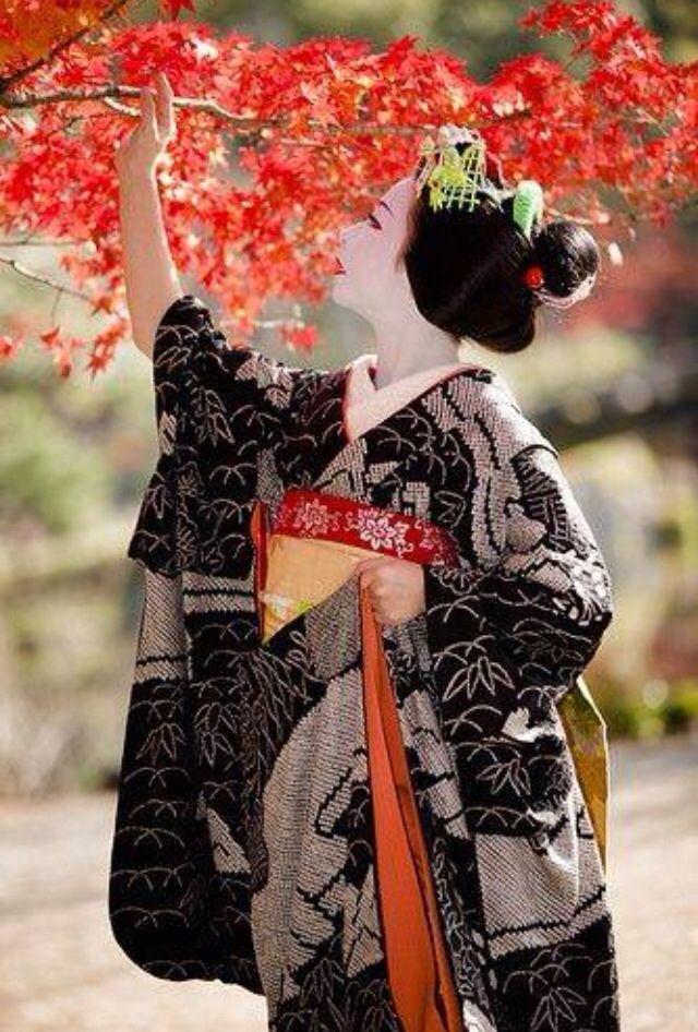 Pin By Eveellsworth On Geisha And Maiko Japanese Geisha Kimono Japan Japan Culture