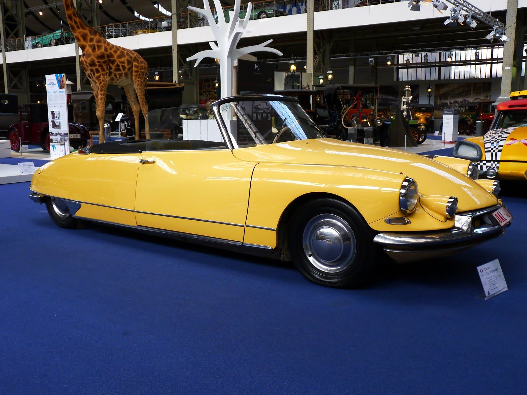 citro n ds 19 cabriolet 1961 citro n pinterest citroen ds. Black Bedroom Furniture Sets. Home Design Ideas