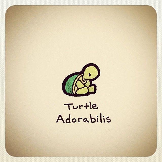 tortoise drawing for pinterest - photo #27
