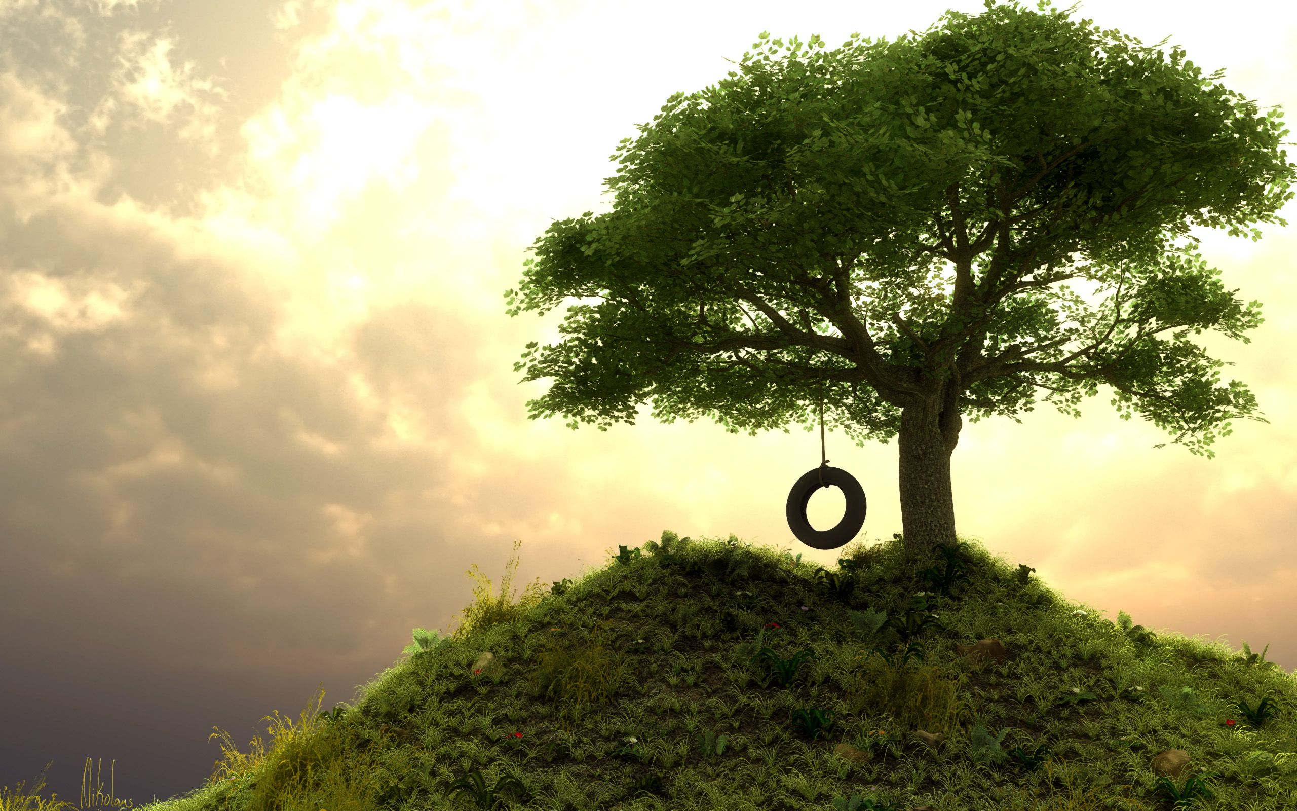 Tree Swing Under The Tree Swings Amazing Pictures And Lone Tree
