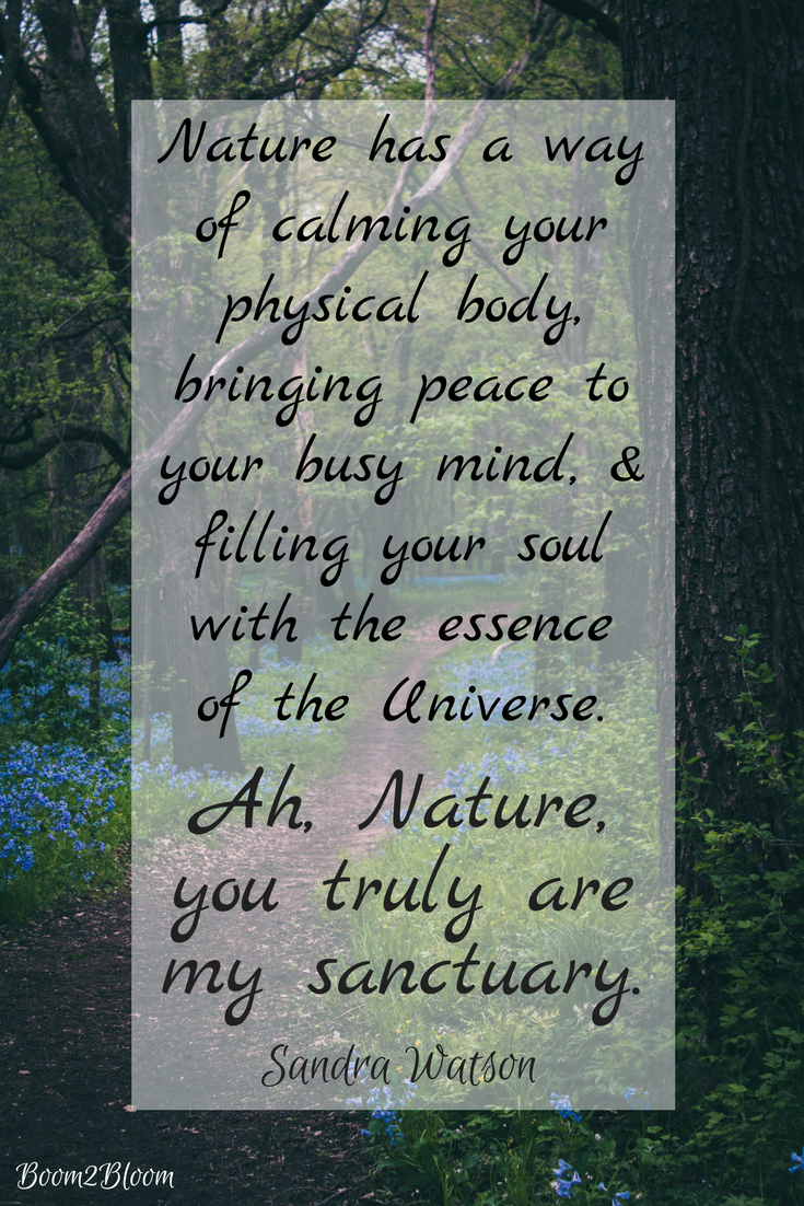 Quote About Nature And Healing