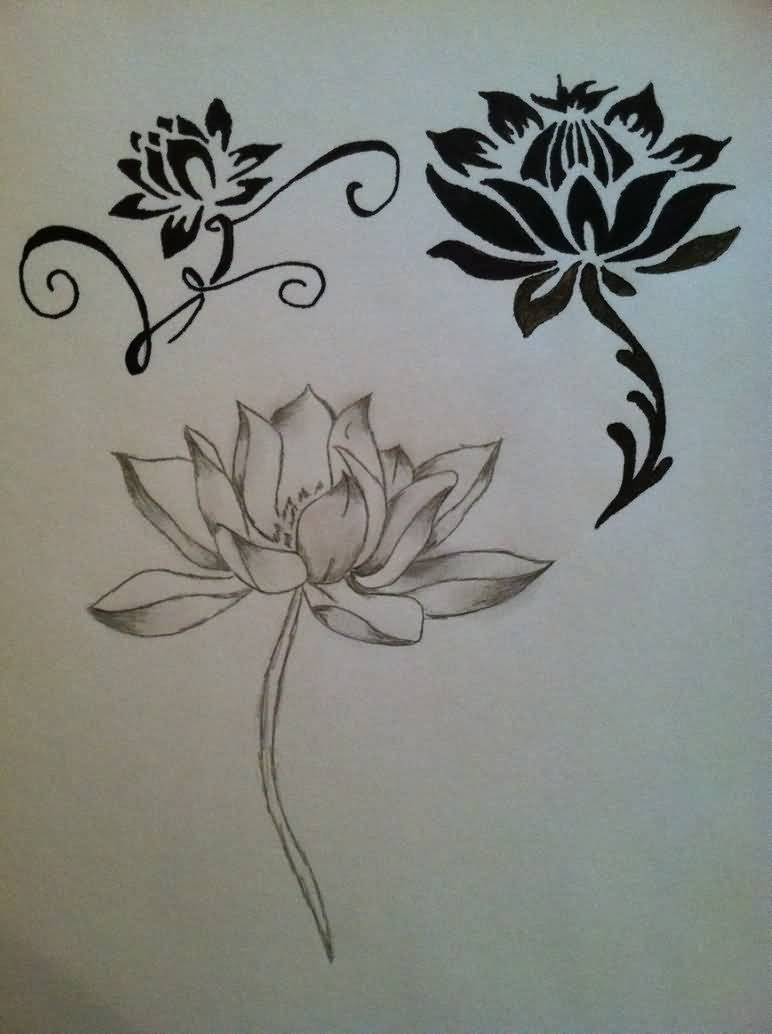 Japanese Lotus Flower Tattoo Designs Human Art Pinterest