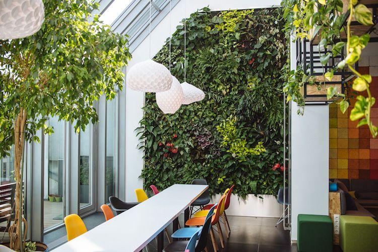 Id E D Co Bureau Co Friendly Le Jardin Vertical Est La Grande Tendance De L Environnement De