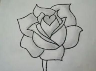 Rose Flower Draw Easy Ideas Roses Drawing Art Drawings