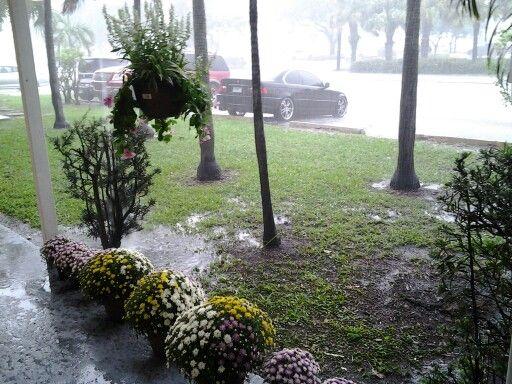 Lloviendo en Florida