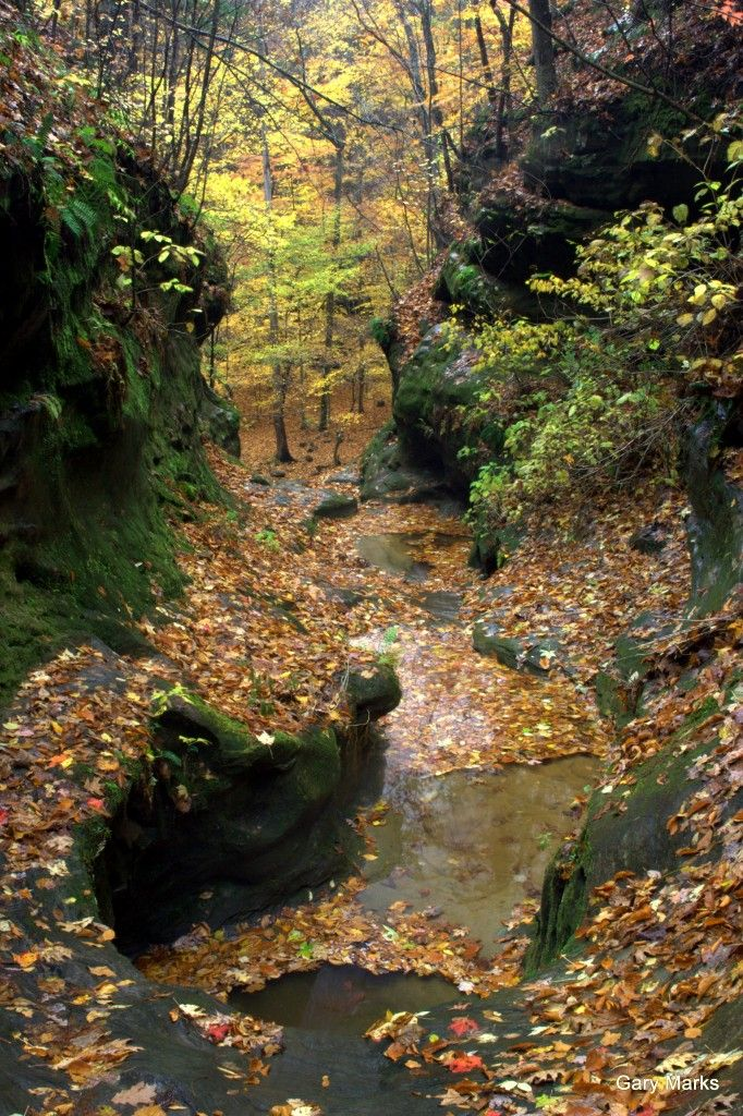 Little Grand Canyon Illinois Us Of A Pinterest Grand Canyon And Destinations