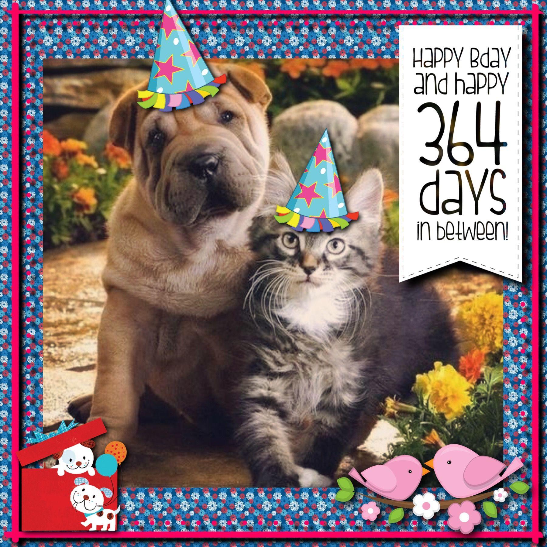 Happybirthday Felicidades Felizcumpleanos Cute Puppies And Kittens Kittens And Puppies Cute Cats And Dogs