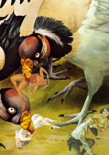 Vulture Attack | dadadreams | Flickr