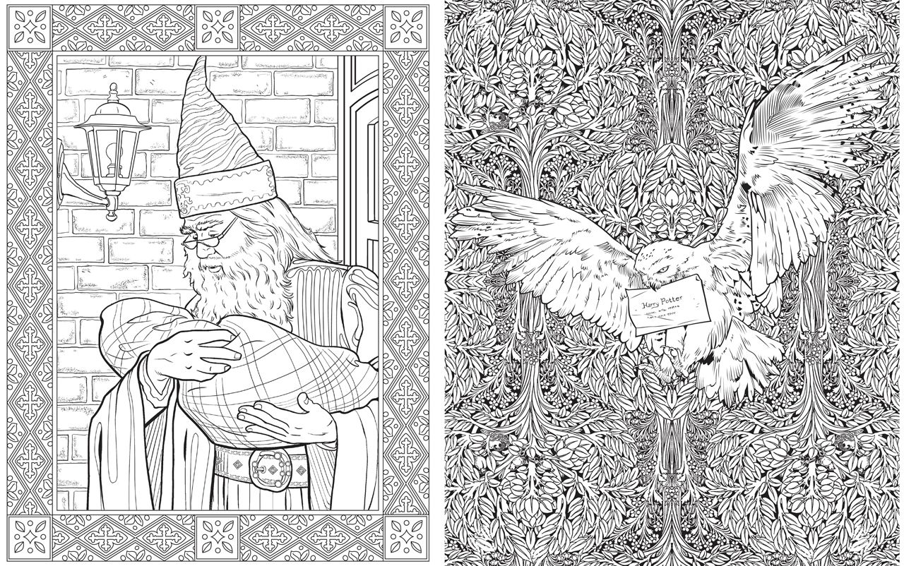 the harry potter colouring book is simply magical who wouldnt want to colour dumbledore or hedwig