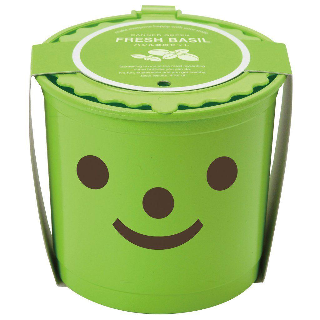 Green smiling face basil planter pot – PASX UK