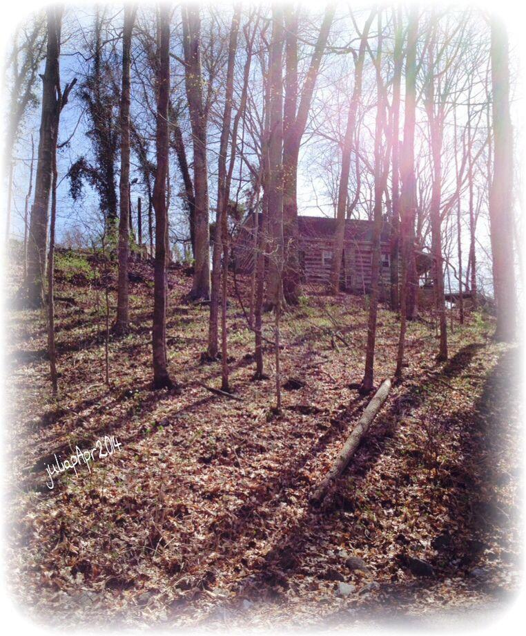 Old Log Cabin ~ Clarksville, TN ~ April2014