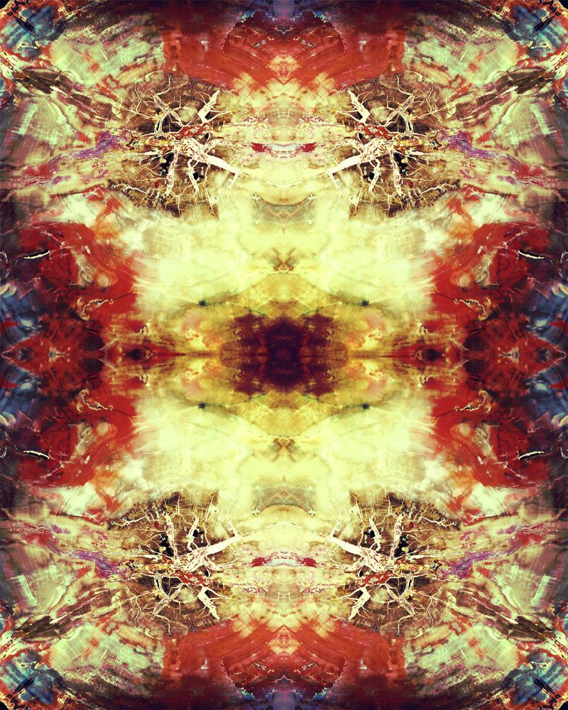 Petrified Wood Kaleidoscope Photograph 8x10 psychedelic trippy ...