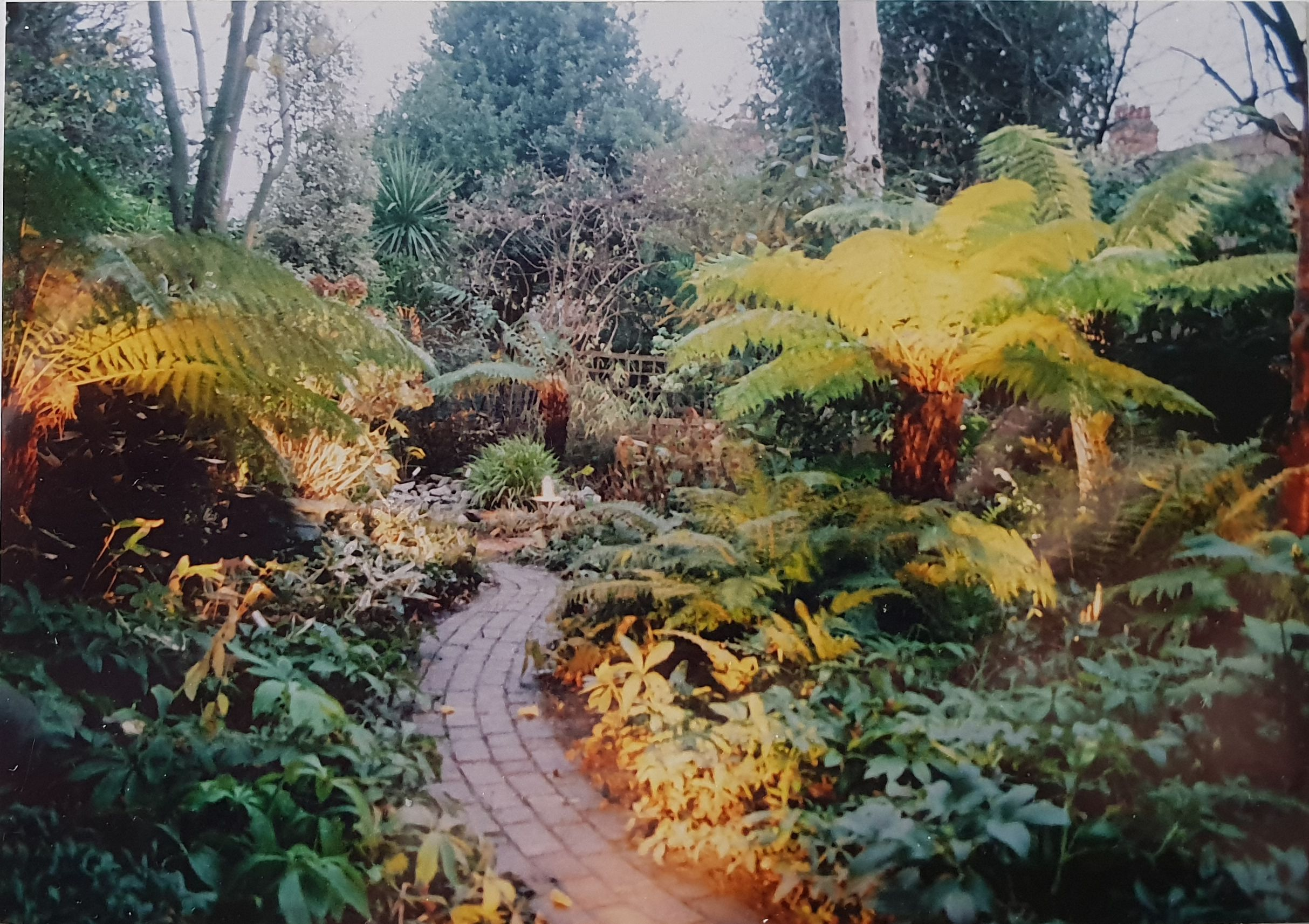 Pin by Outside Designs on introduction | Garden design ...