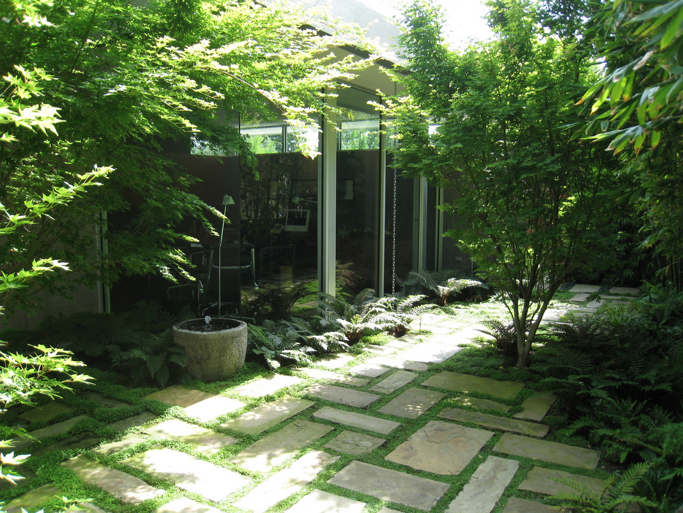 Greenery On The Ground Plane Private Garden Design Outdoor Paving Garden Design
