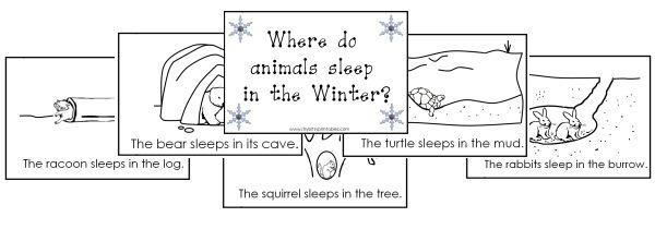 Where do animals sleep? (free printables also include a