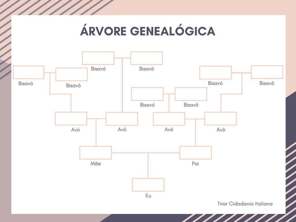 Saiba Como Fazer A Arvore Genealogica Casos Praticos Fazer