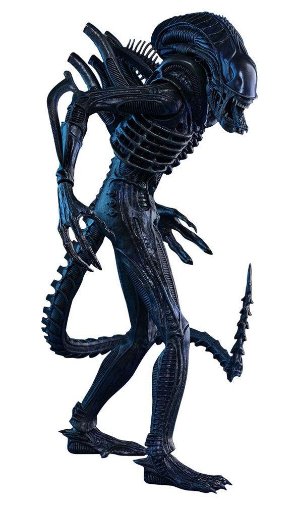 ALIENS   Alien vs depredador, Depredador, Xenomorfo