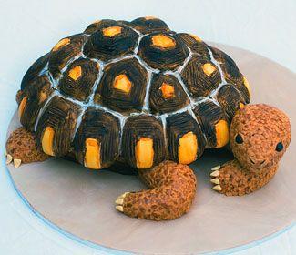 Wild Animal Cakes Designer Cakes Pinterest Animal cakes
