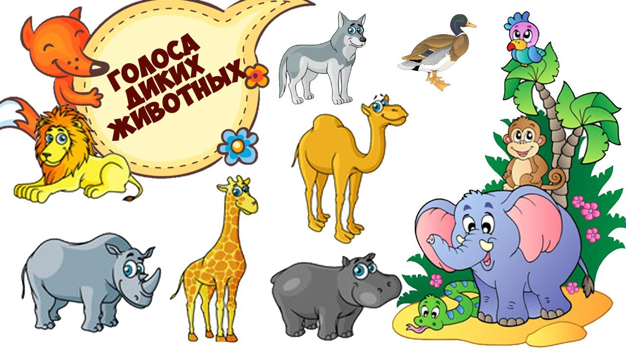 Картинки с животными с голосами