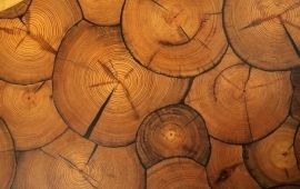 River Recovered Pine Wood Rounds
