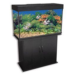 Online Shopping Bedding Furniture Electronics Jewelry Clothing More Gallon Pet Supplies Aquarium
