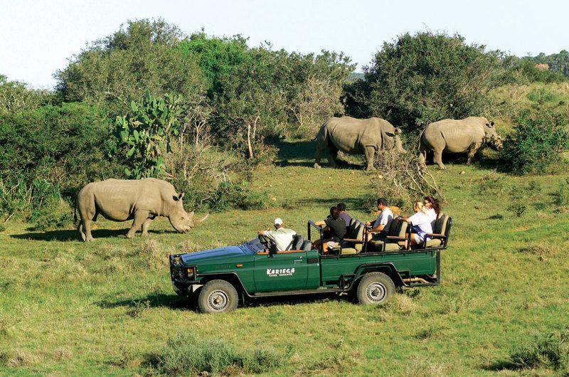 Volunteer world international Kariega game reserve