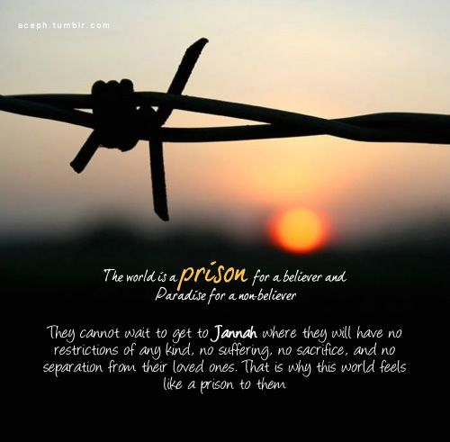 A Muslim S Prison Islamic Quotes Love Quotes Love In Islam