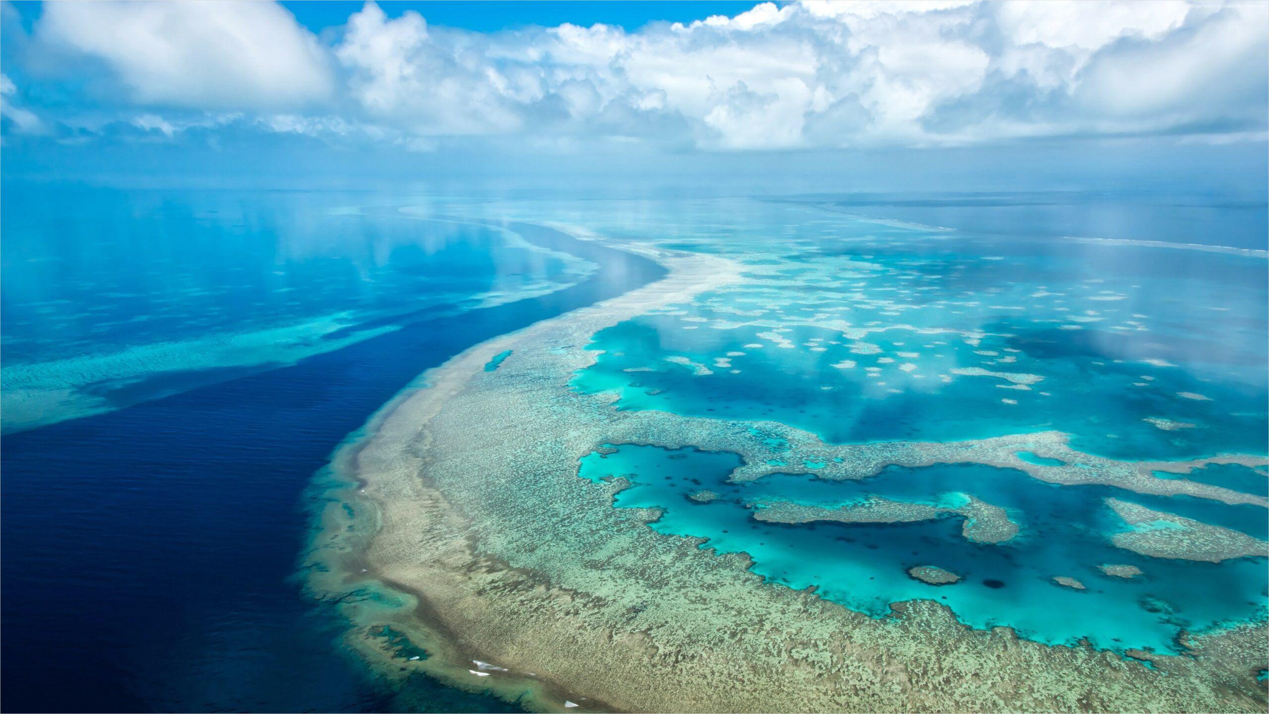 4k Open Ocean Wallpapers In 2020 Ocean Wallpaper Nature Pictures Live Wallpapers
