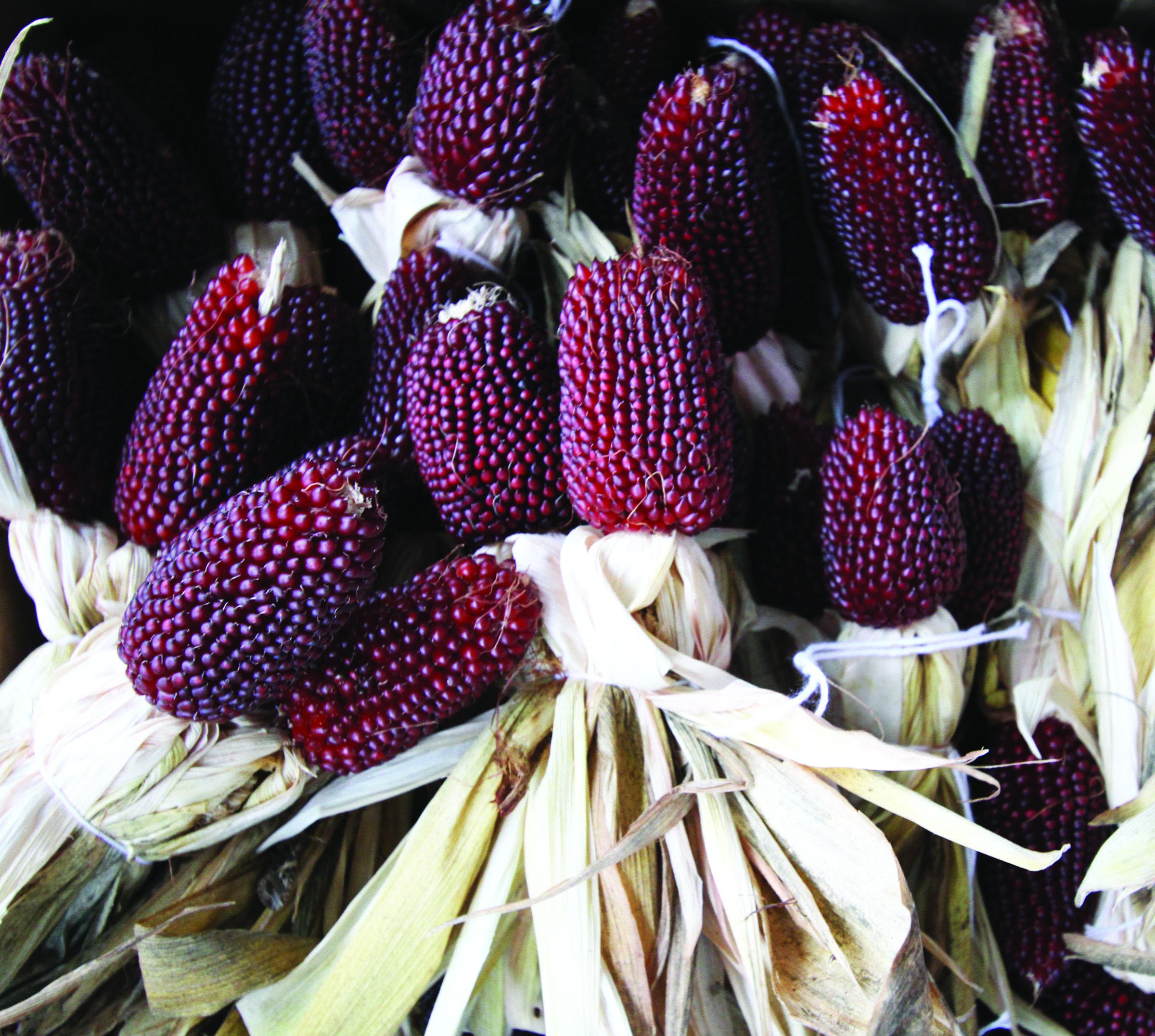 подарков фото земляничной кукурузы камера женской бане