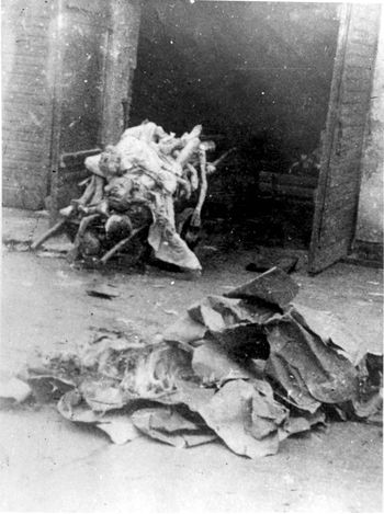 Warsaw ghetto, Poland, Pile of bodies on a wagon.