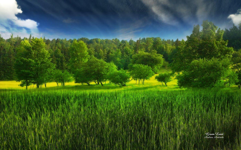 Greenland Hd Wallpaper For Desktop With Images Green Landscape