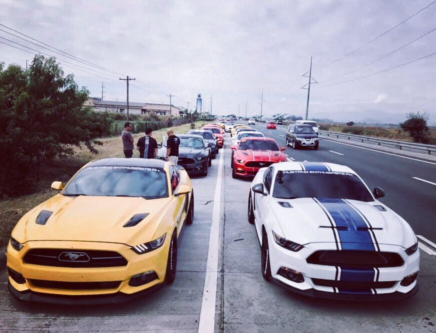 Mustang Enthusiasts Philippines Mustang Best Muscle Cars Mustang Shelby