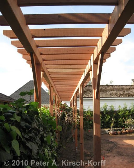 How To Build A Grape Arbor Grapes Arbor Plans Lattice