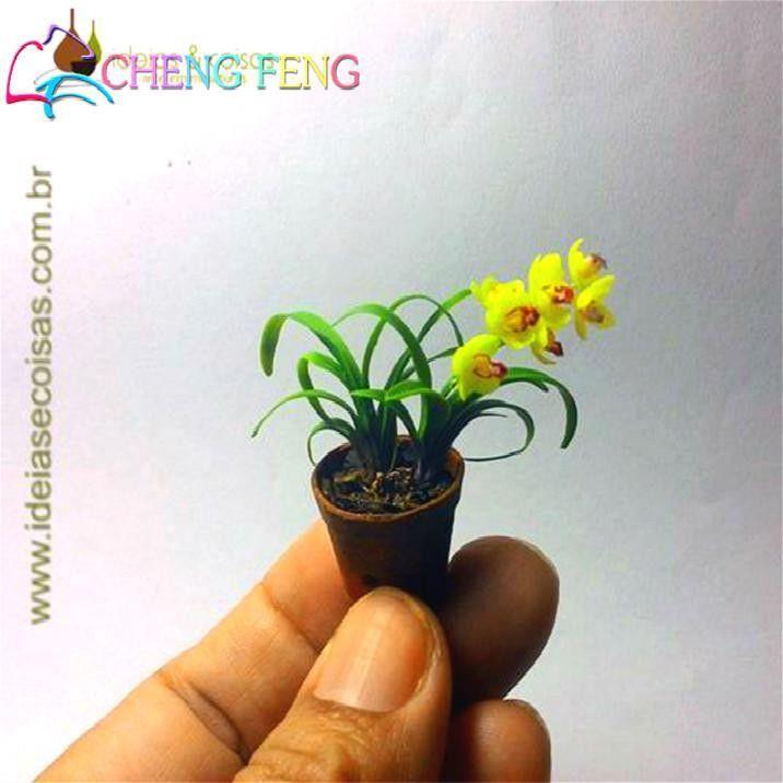 Indoor Home Miniature Mini Orchid 100 Pcs Seeds Garden Plants Four Seasons