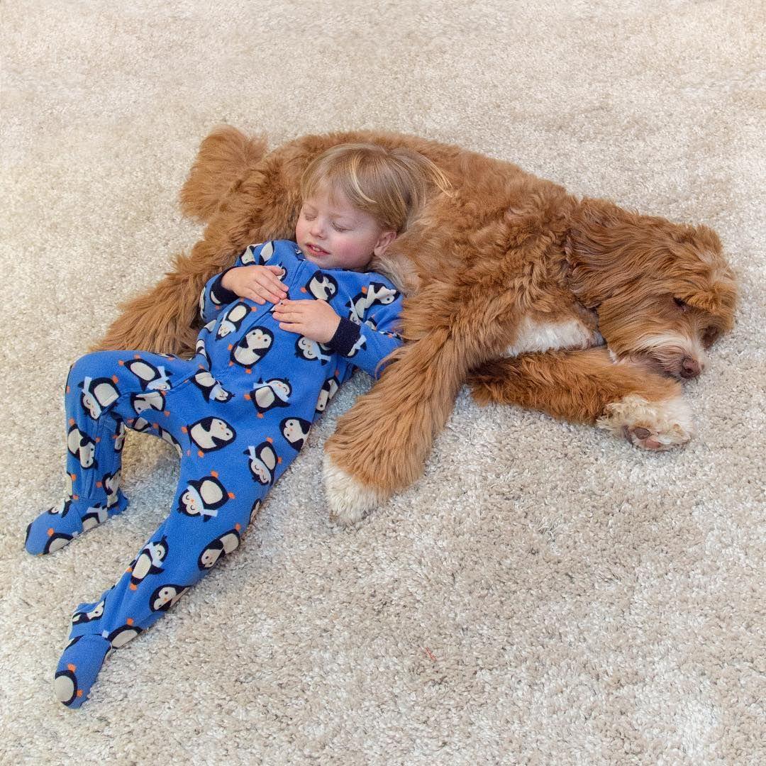 Мальчик и собака: крепкая дружба в трогательных фото