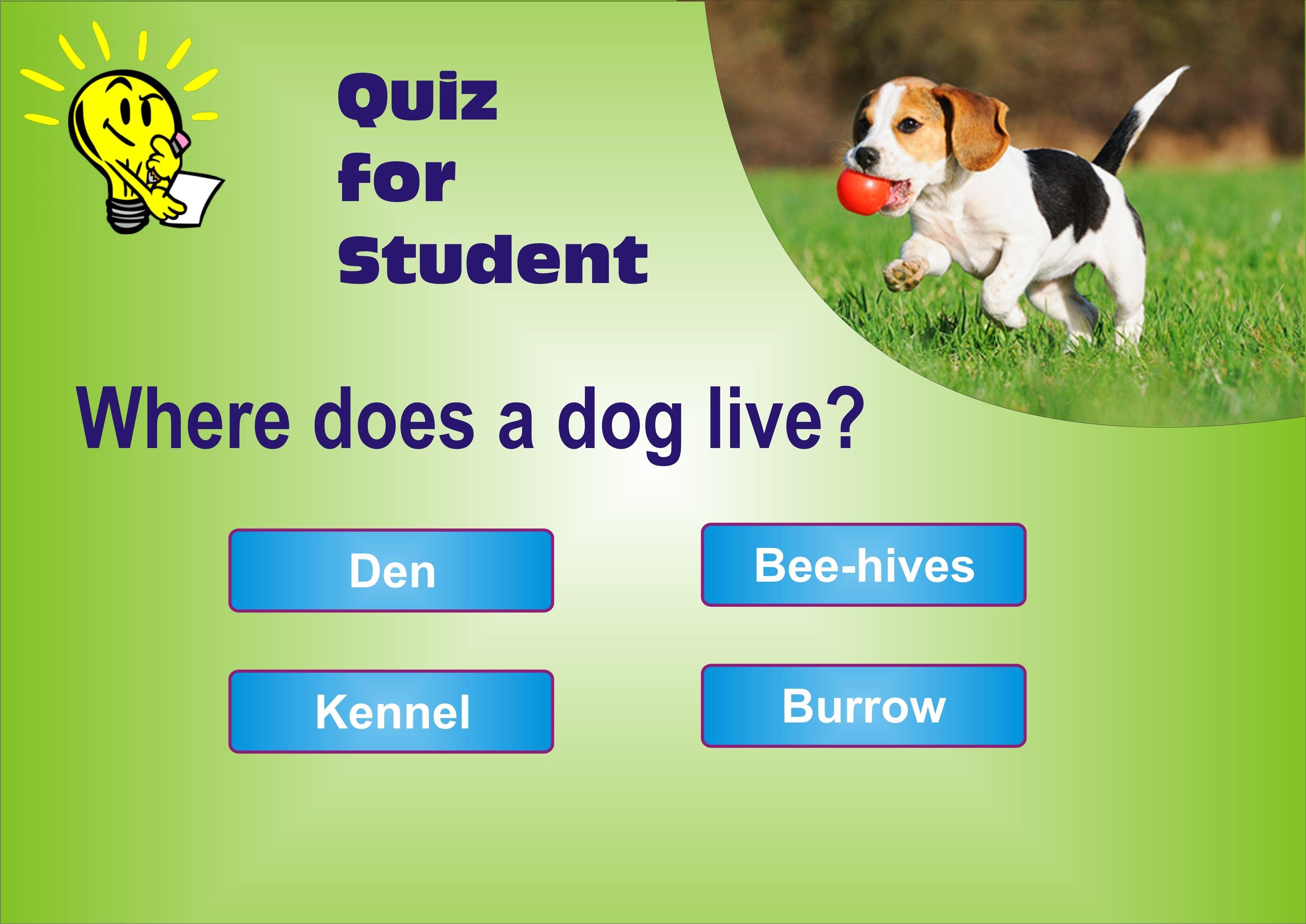 Gk Quiz For Pre Primary Kids Puzzles For Kids Grammar Lessons Quiz [ 2481 x 3508 Pixel ]