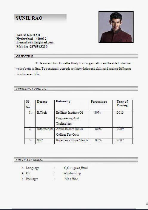 curriculum vitae services Sample Template Example ofExcellent ...